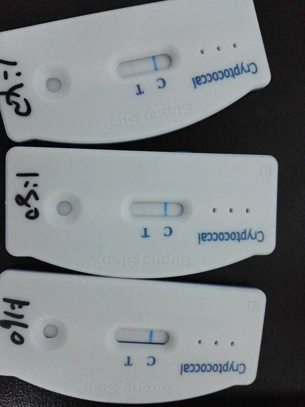 Cryptococcal Antigen Test2